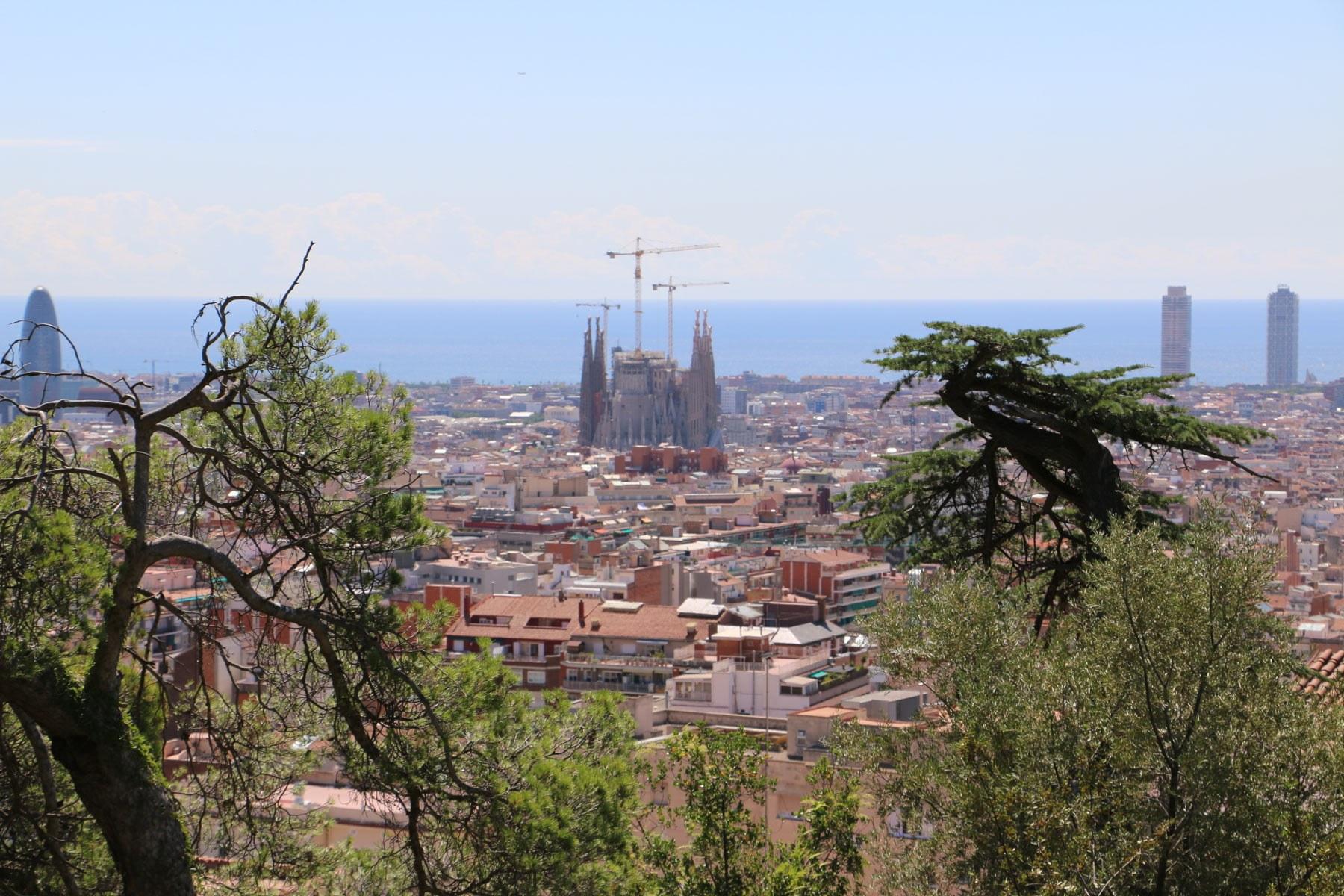 Barcelona-Wide.jpg#asset:360